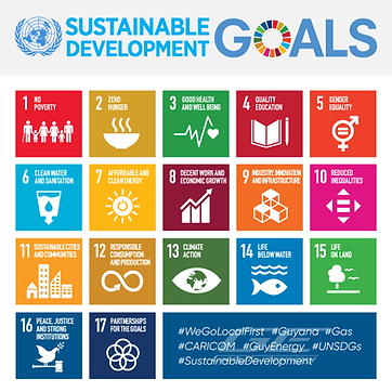 sustainable-development-goals-infographi