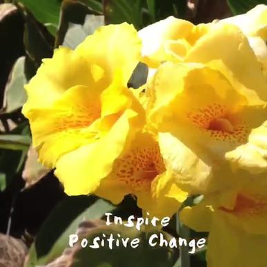 Inspire Positive Change Block 2:50pm
