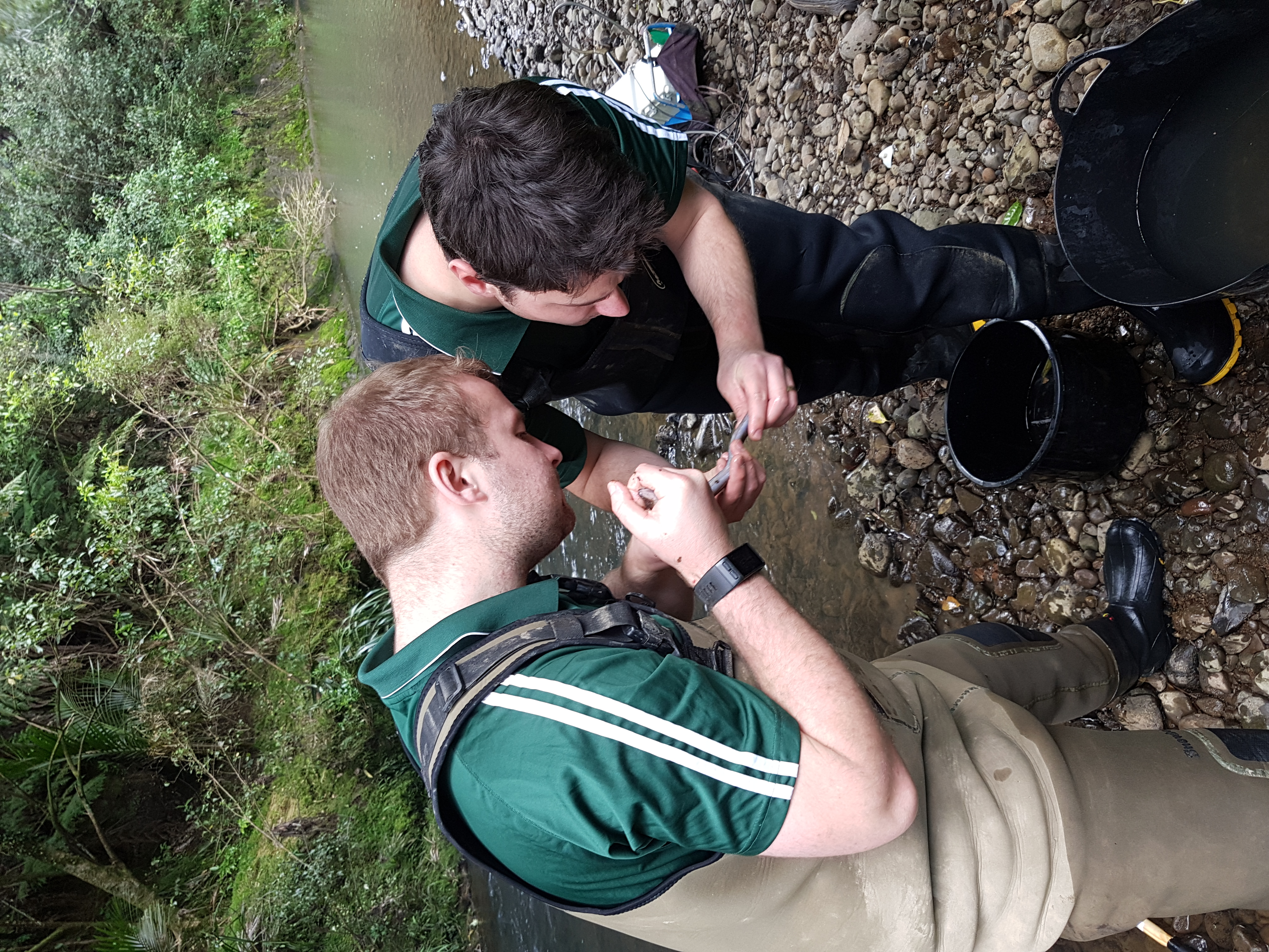 Adam and Connor assessing fish
