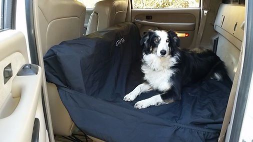 car seat cover for dogs seat cover protection waterproof seat cover