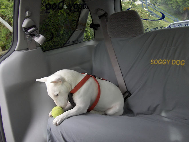 car seat covers for dogs waterproof dog car seat covers
