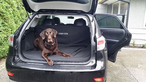 waterproof truck seat covers car seat covers for dogs