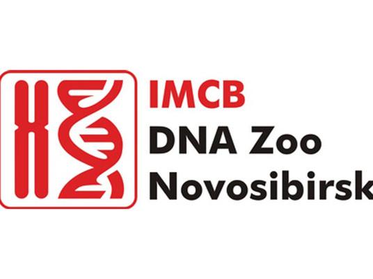 Welcome DNA Zoo Novosibirsk!