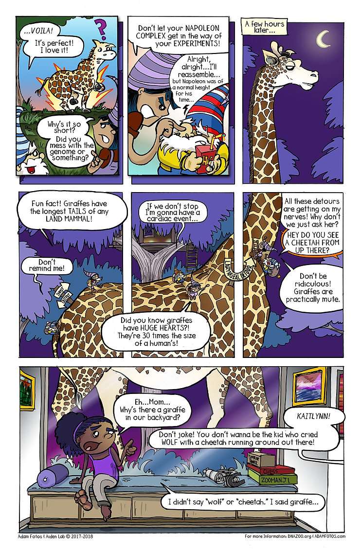 cheetah-page2-resized.jpg