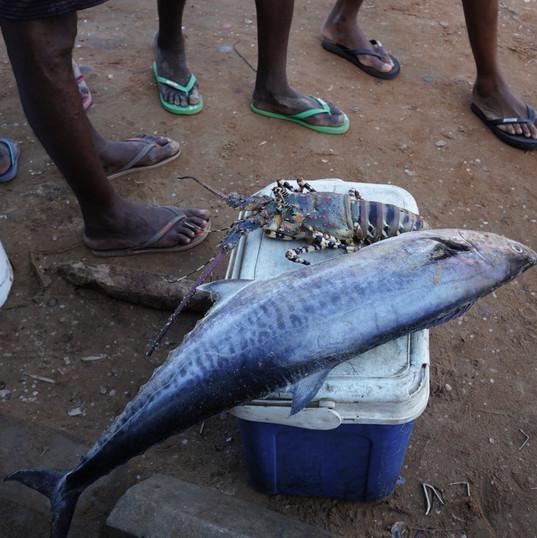 Fresh fish and Flip Flops