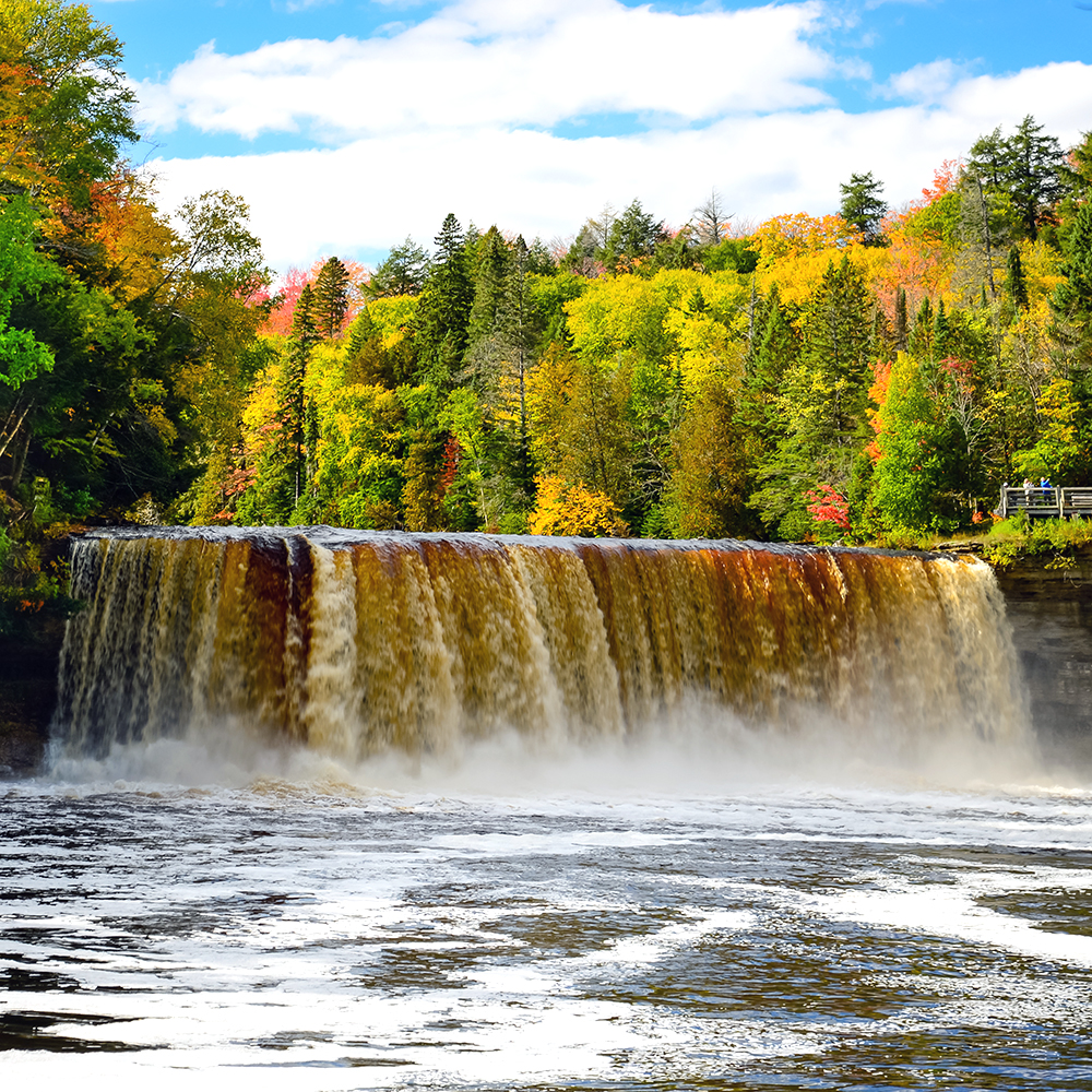 tfalls-cover-square