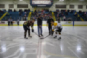 Fire and Police Hockey Game