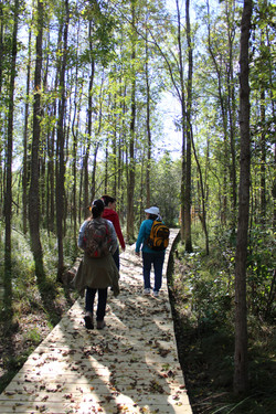 Voyageur Island Trail