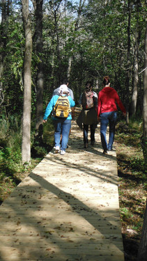 Voyageur Island Walking Trail