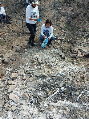 Encuentran osamentas con al menos siete cuerpos en el ejido Molino de Camou