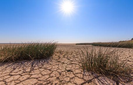 Será temporada de incendios forestales complicada por la sequía