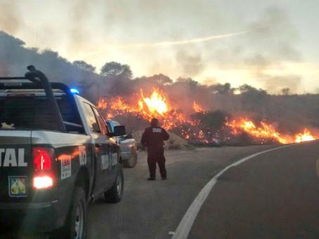 Sofocan segundo incendio forestal del año en Sonora, ahora en Nácori Chico