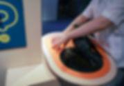 Ein Kind ertastet im Museum ein Exponat. Das Objekt ist ein 3 D Druck einer Taube in Lebensgröße. Zusätzlich hört das Kind die Stimme des Vogels und weitere wissenswerte Fakten. Mit Brailleschrift ist auf einer orangefarbigen Tischplatte weitere Information zum Exponat erhältlich. auf