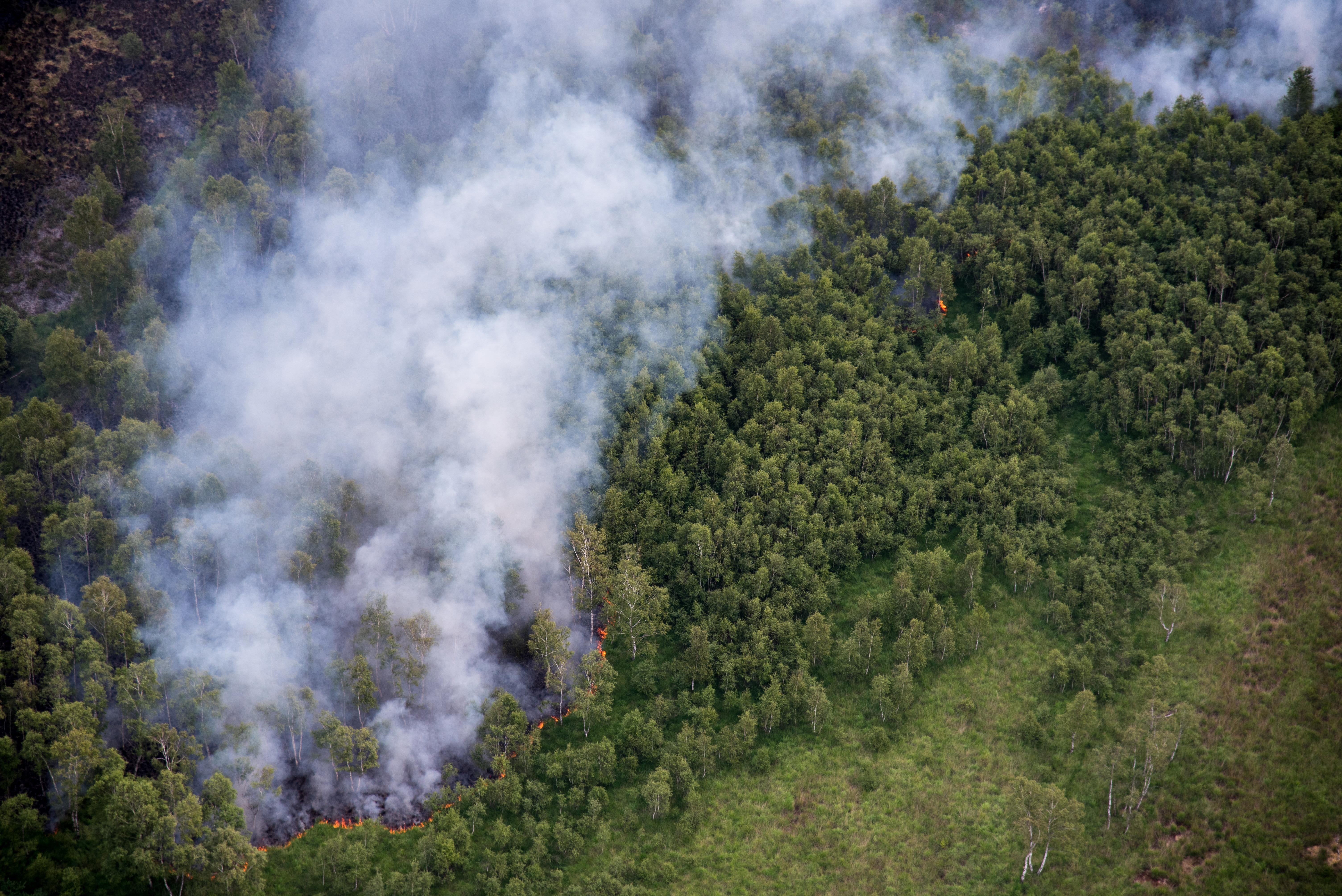 Luchtfoto van de brand Mariapeel