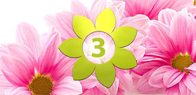 Flower with the number 3 with pink flowers on the background