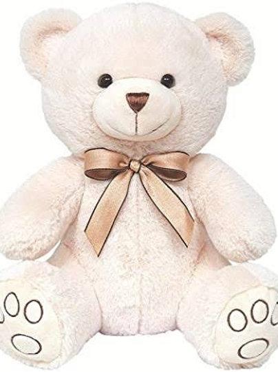 Pelucia Urso Carinho