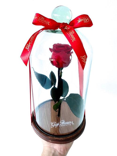 Rosa Encantada Vermelha