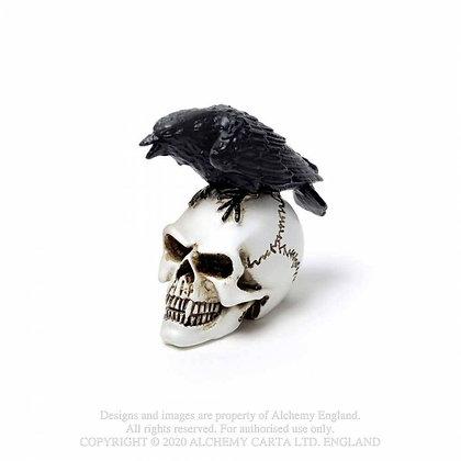 Raven Skull: Miniature(Alchemy Gothic)