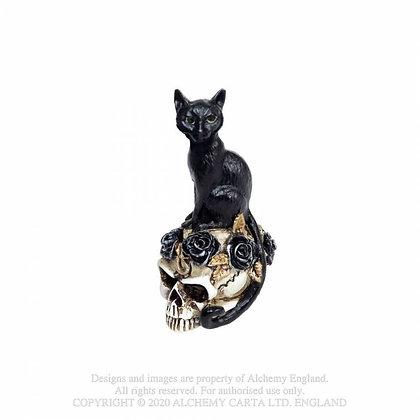 Cat/Skull: Miniature(Alchemy Gothic)