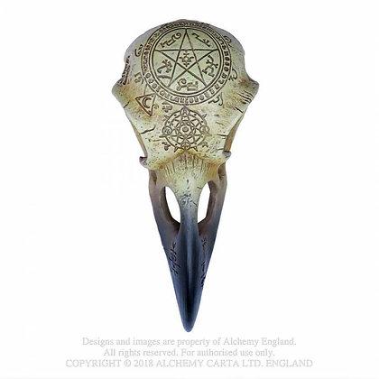 Omega Raven Skull (Alchemy Gothic)