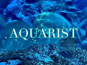 Reflections of an Aquarist