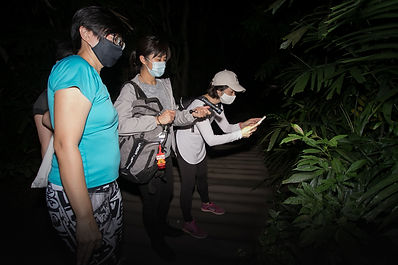 Night Adventure Singapore.jpg
