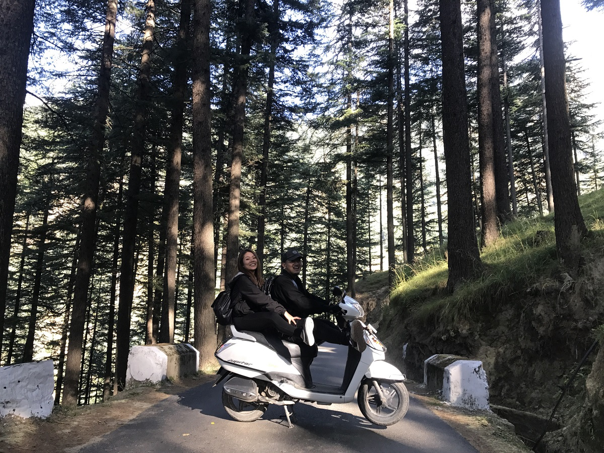 scooterrentalsmanali.forest
