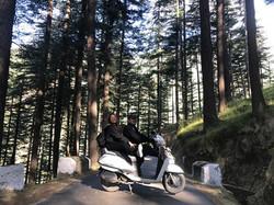 scooterrentalsmanali.forest