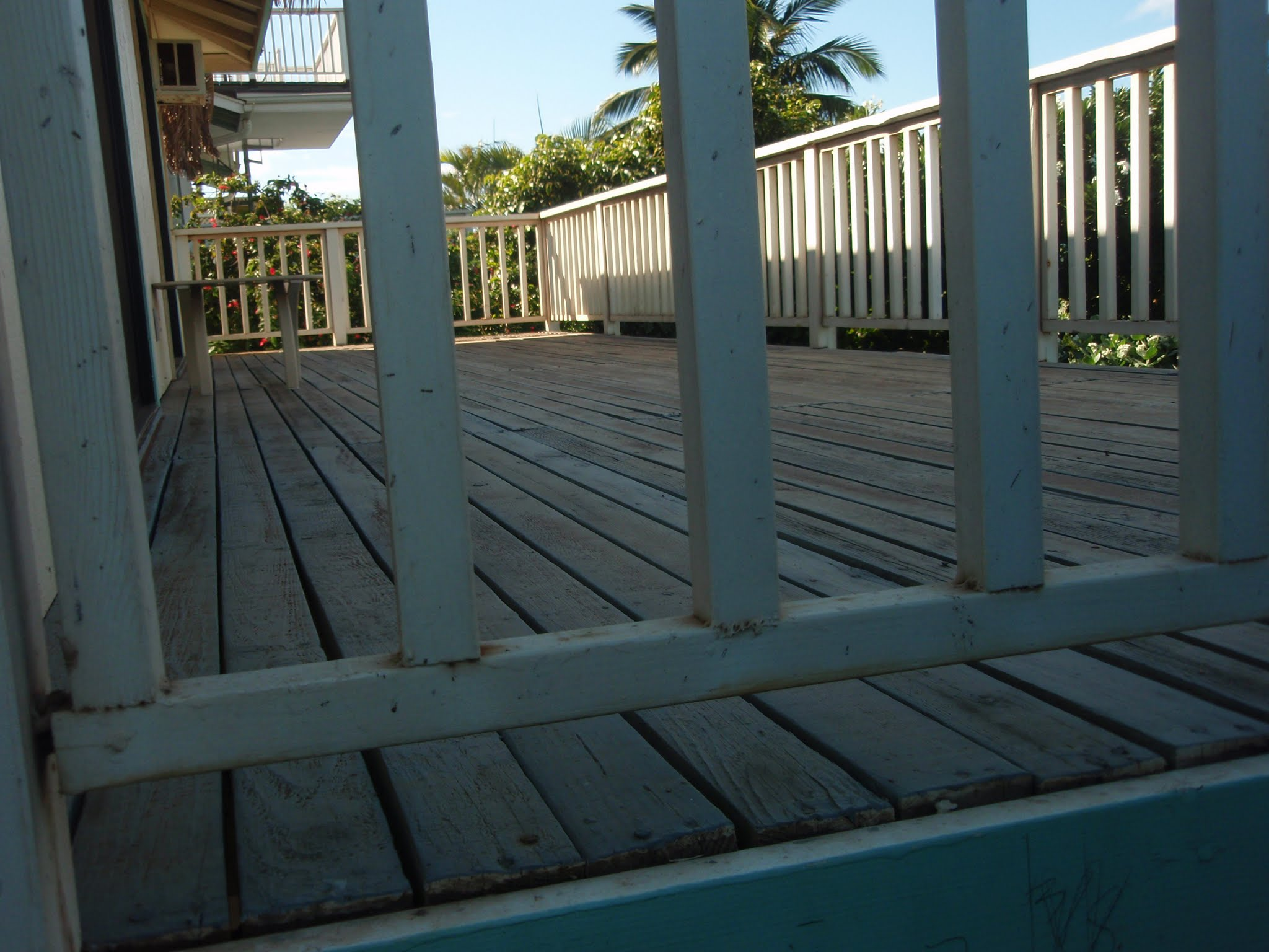 The rear deck again showing the rotted out 2 x 4 decking & railings