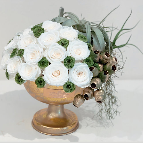 Long lasting White Roses with Air plants