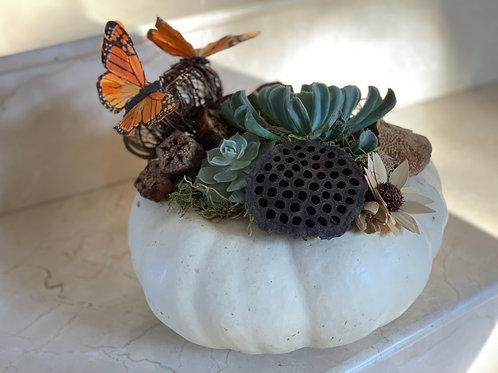 Pumpkins Arrangements