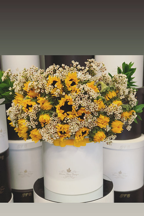 Large Size Sun Flowers box