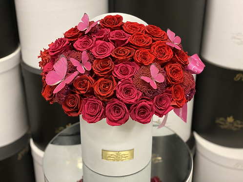 Medium Size Preserved Roses Box in Color Hot Pink and Red