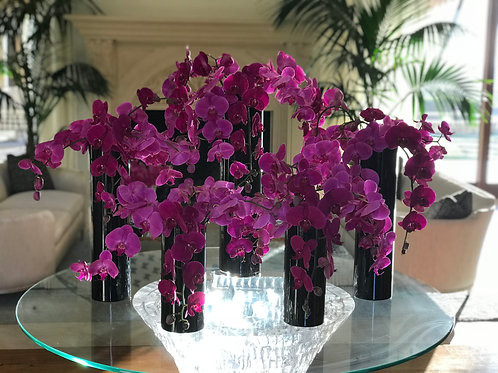 5 Different Sizes of Black Vase with Orchids