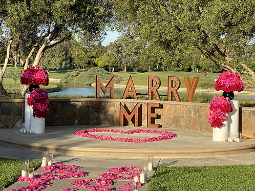 Proposal Setting and decorations