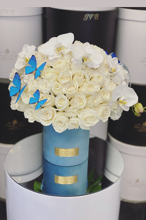 Medium Size Flower Arrangement all white in Blue box
