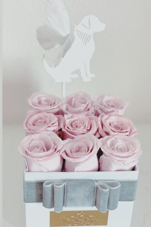 Preserved Roses For Dog Memorial