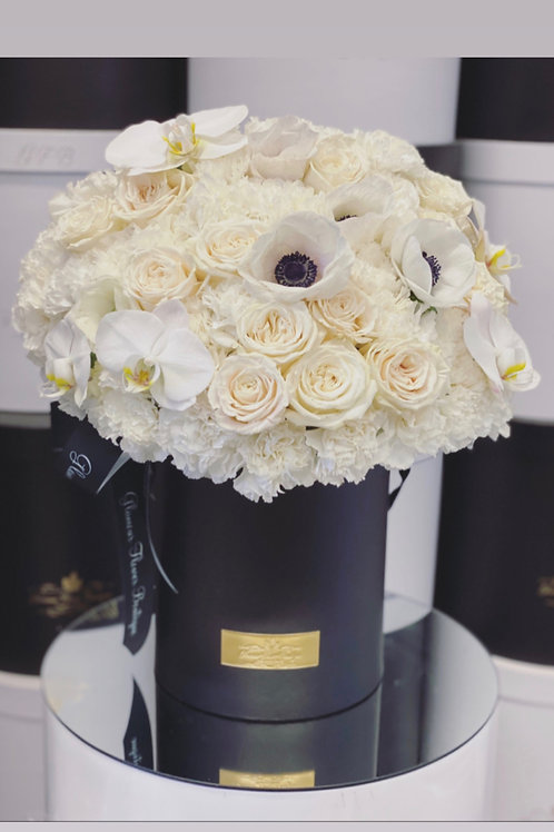 All White Flowers in Medium Size