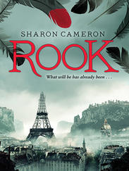ROOK written by Sharon Cameron