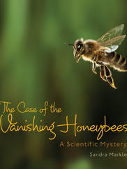 THE CASE OF THE VANISHING HONEYBEES written by Sandra Markle