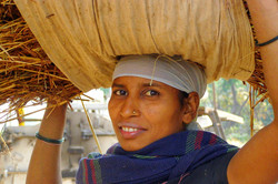 Woman Carrying Straw On Head