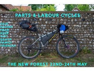 2020 New Forest Camping Trip.