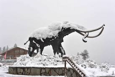 Mammoth Stay #5 - March 26-28, 2021 - Guest.