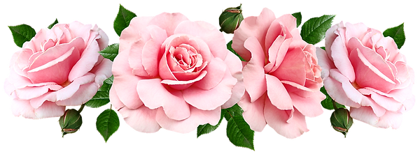 flowers-4707443_1280_edited.png