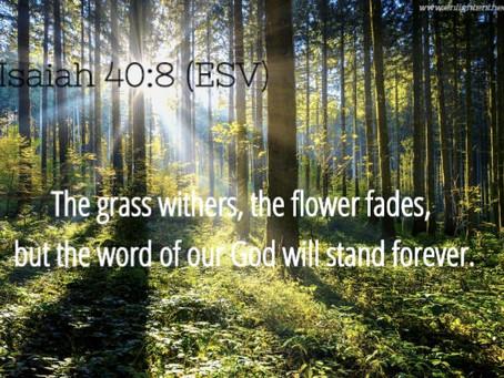 ✞ Isaiah 40:8 ✞