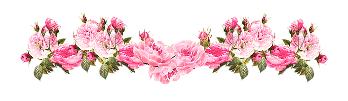 vintage-pink-rose-border-png-20_edited.p