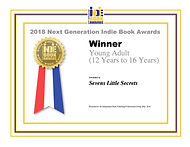YA12-16Winner Seven Little Secret.jpg