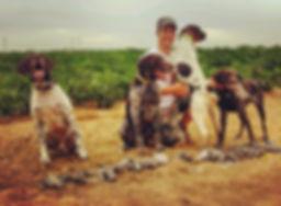 Arizona Dove Hunting Guide, Bird Hunting Dogs, Dove Hunting Arizona