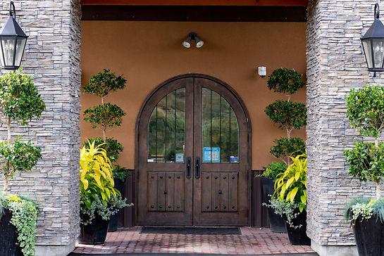 intrigue door.jpg