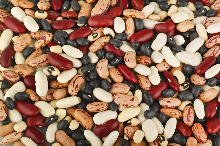 mixed colorado dry beans